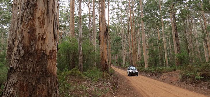 Capital Drives: Perth