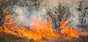 South Australia battling bushfires